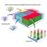 Hybridized GeneChip® Microarray